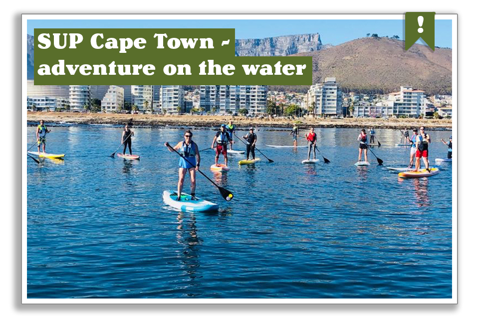 SUP Cape Town- adventure on the water.
