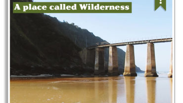 A Place Called Wilderness